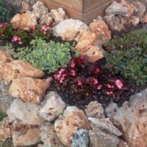 Rocce ornamentali