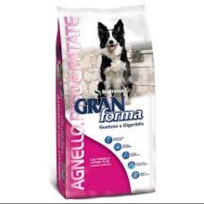 GRAN FORMA DOG - AGNELLO RISO E PATATE - DA 15 KG